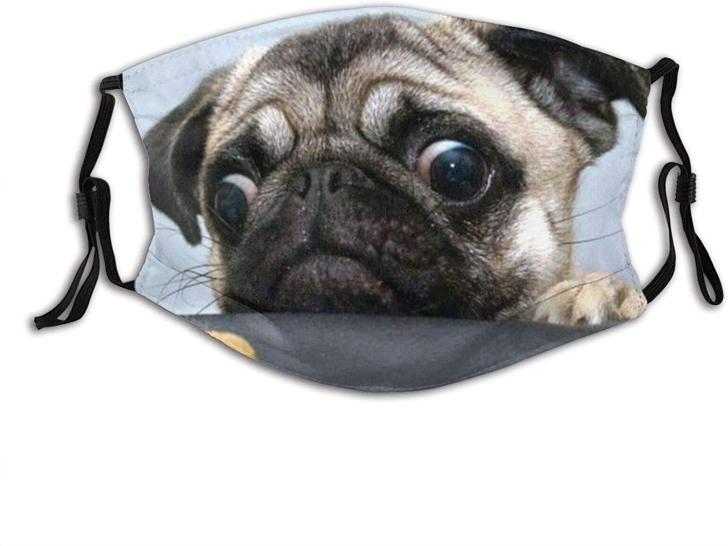 Funny Dog Humor Pug Adjustable Face Mask With Filter Pocket Washable Reusable Face Bandanas Balaclava With 2 Pcs Filters