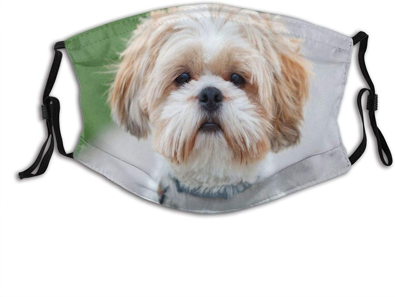 Animal Funny Shih Tzu Dog Face Mask Adjustable Washable, For Adult Fashion Scarves Balaclavas With 2 Filters