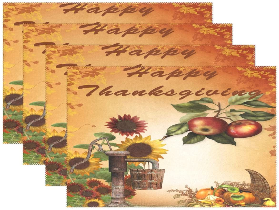 WOZO Happy Thanksgiving Day Harvest Placemat Table Mat 12