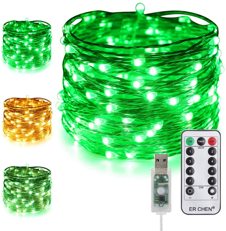 ER CHEN Dimmable USB String Lights, 33ft 100 LED Warm White & Green Color Changing Fairy Lights with Remote&Timer, 8 Modes Silver Coated Copper Wire Lights for Bedroom, Patio, Party
