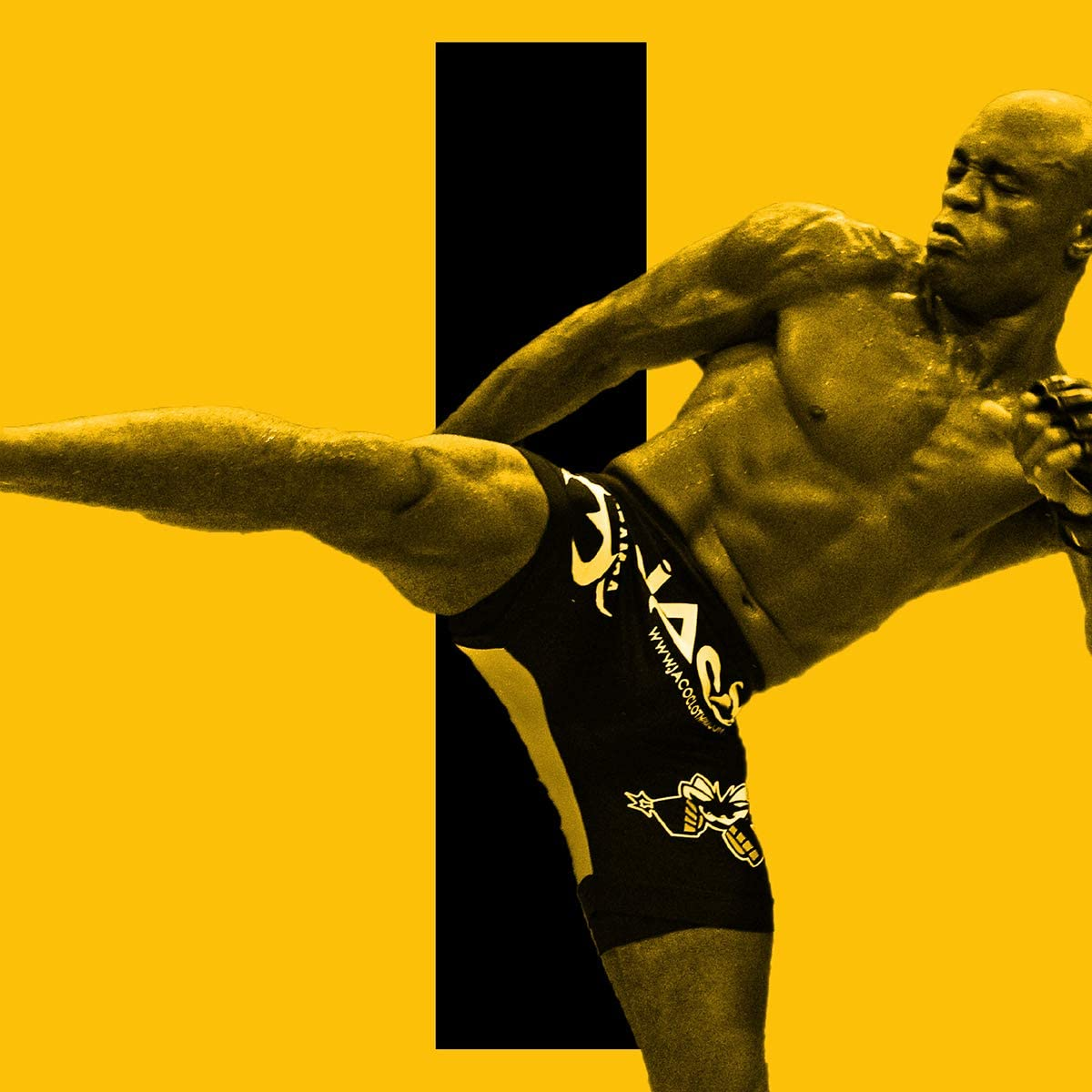 Anderson Silva Poster Print, MMA Fighter, Canvas Art, Real Fighter, UFC, Anderson Silva Decor, ArtWork, Posters for Wall SIZE 24 x 32 Inches