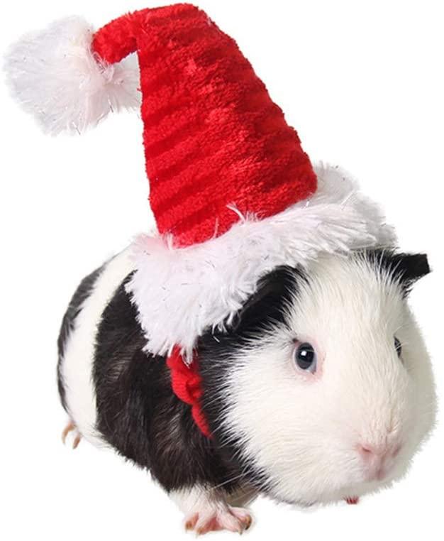 POPETPOP Guinea Pig Costume - Cat Santa Hat Pet Christmas Hat Santa Claus Cap Head Accessories for Rabbit Hamster Guinea Pig Rats Kitten and Small Animals