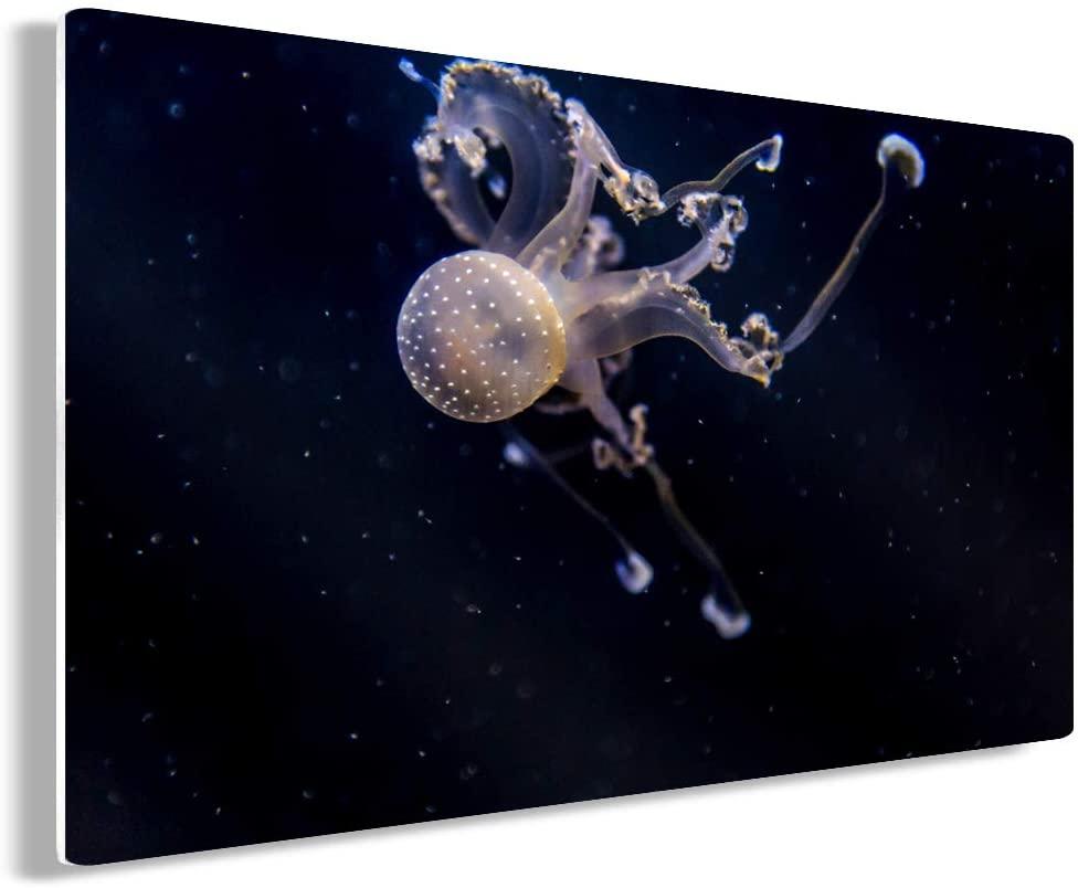 Funny Ugly Christmas Sweater Sea Animals Metal Wall Art Medusa Home Decor Prints 30