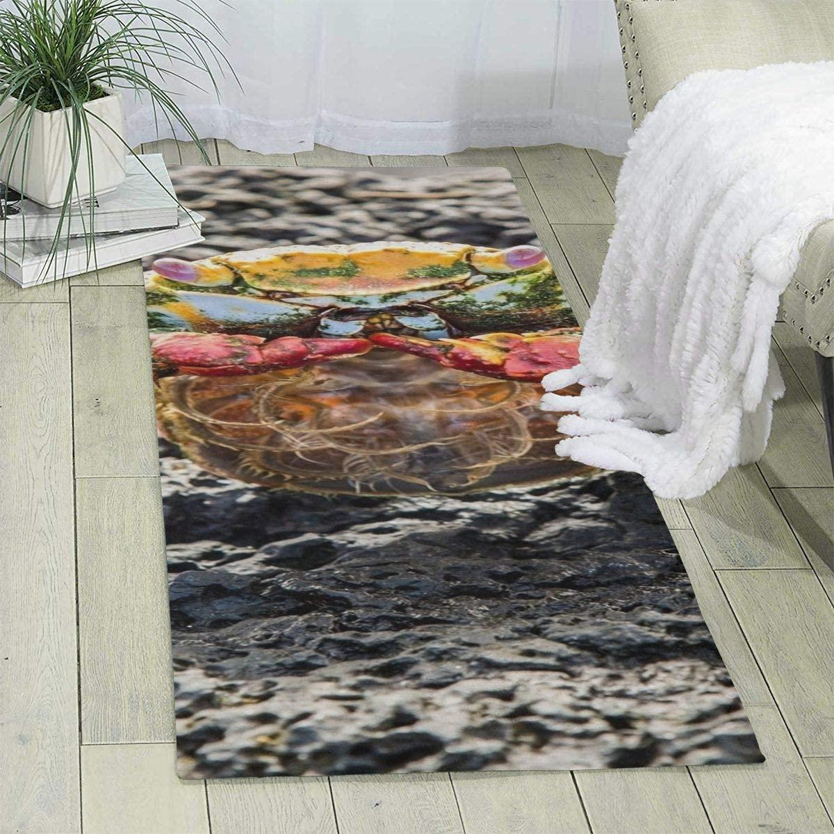 Pooizsdzzz Carpet 70 X 24 X 6mm Stone Red Crab Modern Area Rug for Bedroom Living Room Floor Home Decor