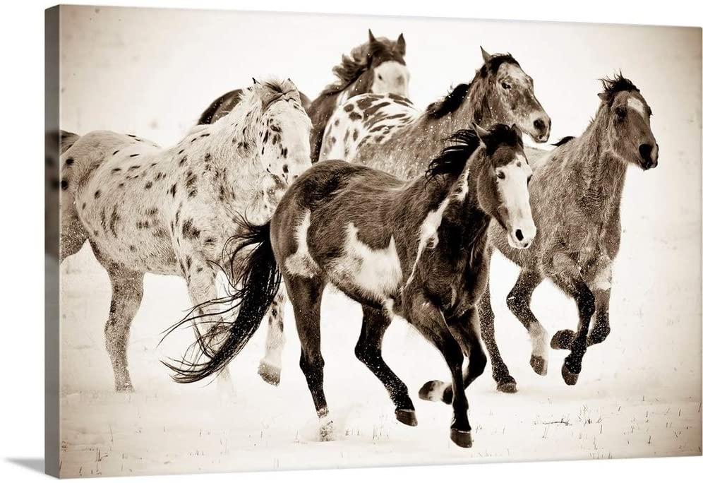 Painted Horses Run Canvas Wall Art Print, 24x16x1.25