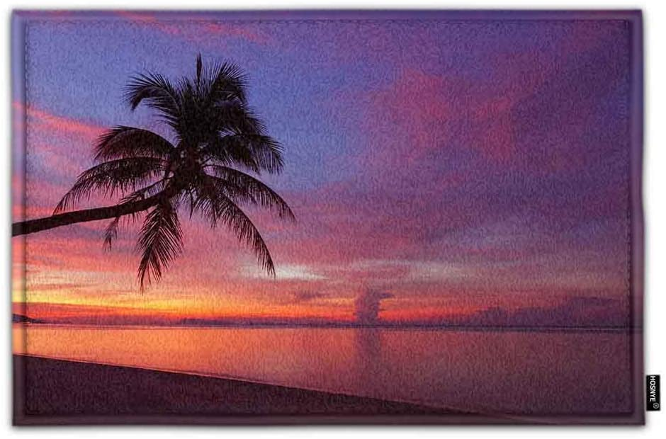 HOSNYE Beach Doormat Bath Floor Kitchen Door Rugs Mat Tropical Sunset with Palm Tree Super Soft Flannel Fabric with Inner Thick Sponge