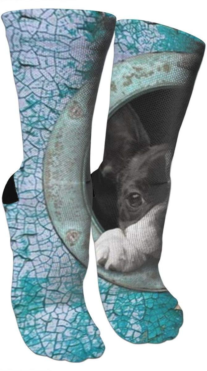 ~ Socks Cute Boston Terrier Compression Socks Training Socks Crew Athletic Socks Long Sport Soccer Socks Soft Knee High Sock Christmas Socks for Men Women