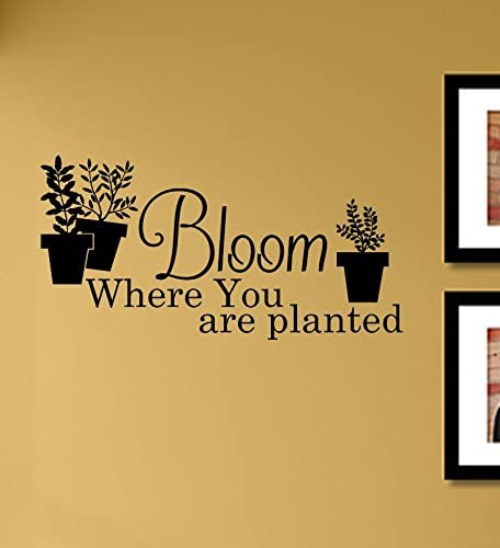 Bloom Where You are Planted Vinyl Wall Art Decal Sticker