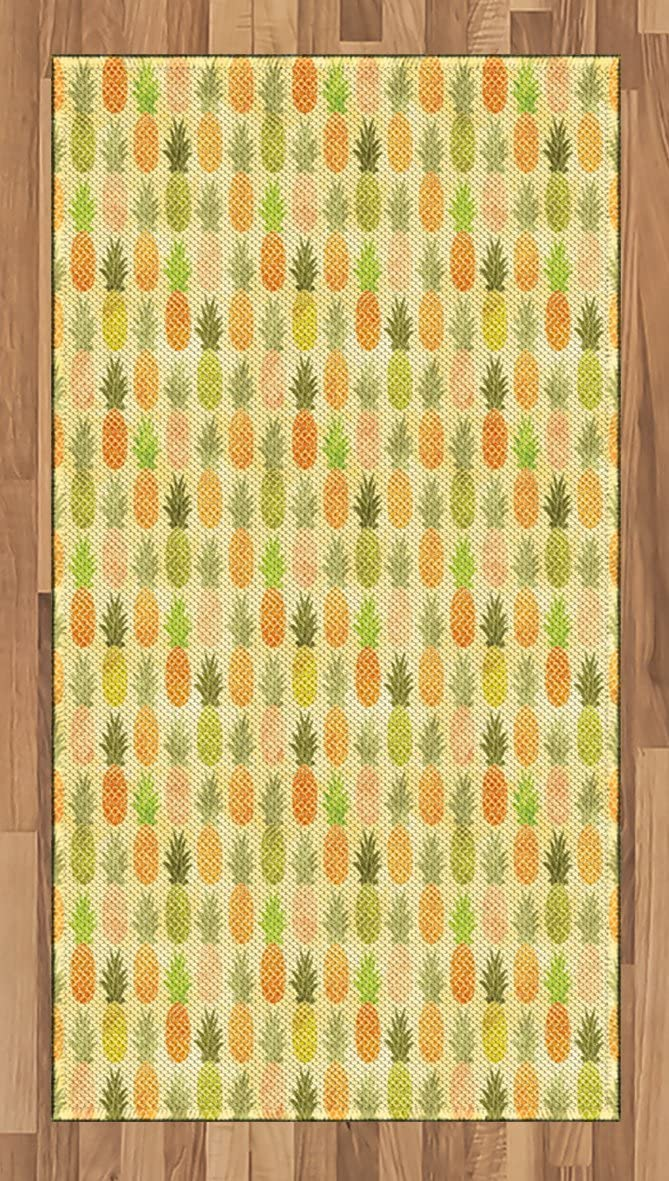 Ambesonne Vintage Area Rug, Tropical Tasty Fruit Exotic Hawaiian Holiday Theme Illustration with Scales Pattern, Flat Woven Accent Rug for Living Room Bedroom Dining Room, 2.6' x 5', Multicolor