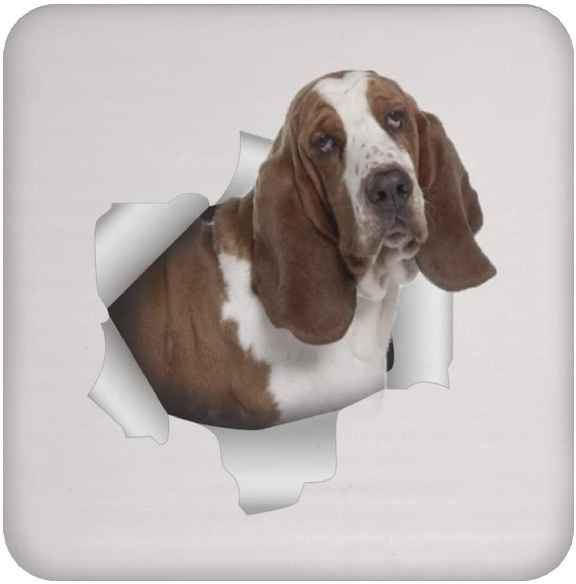 Funny Basset Hound White Brown Coaster For Men Women Dog Lovers
