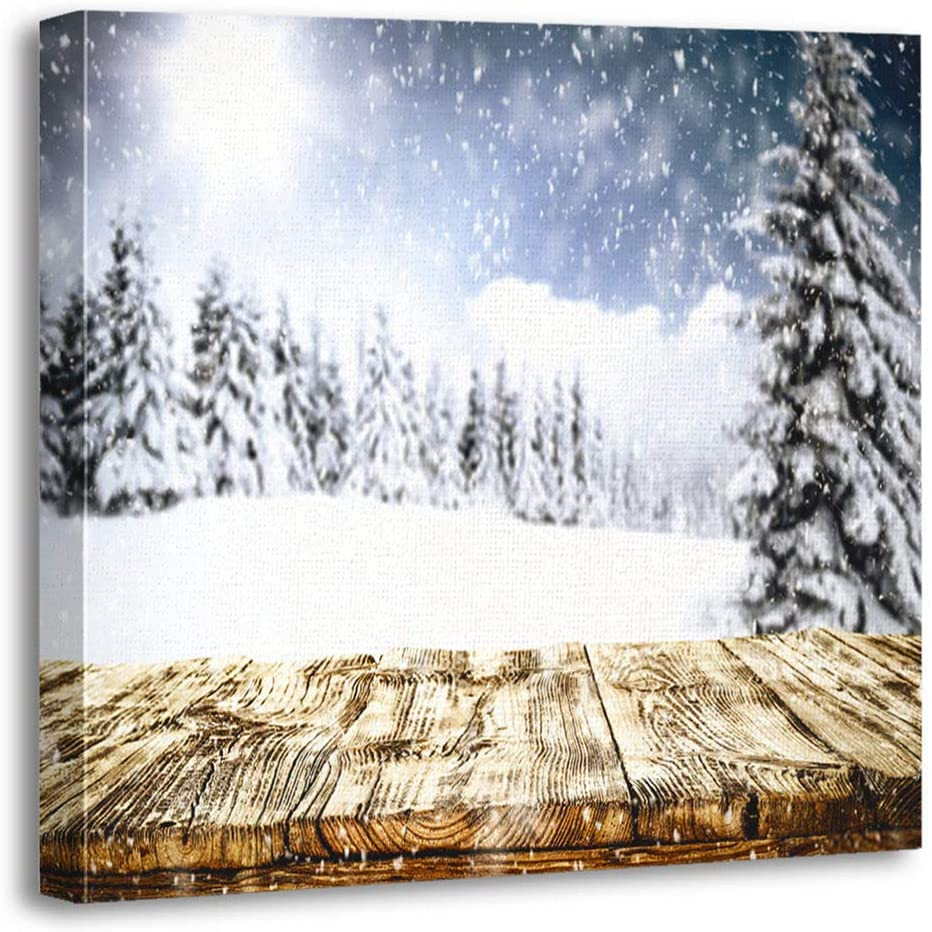 Qryipd 16x16 Inch Winter of Free Space for Your and Christmas Time Soft Durable and Beautiful Square Pillowcases Decorate Your Bedroom Living Room and Dormitory