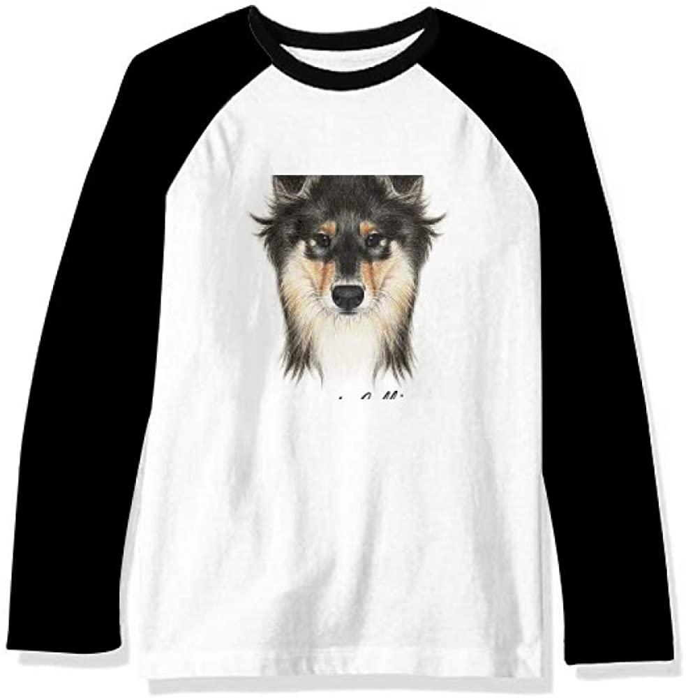 Long-haired Rough Collie Pet Animal Long Sleeve Top Raglan T-Shirt Cloth