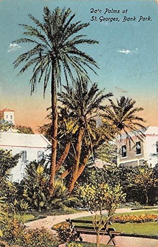Bermuda Old Vintage Antique Date Palms Bank Park St. George's Postal used unknown