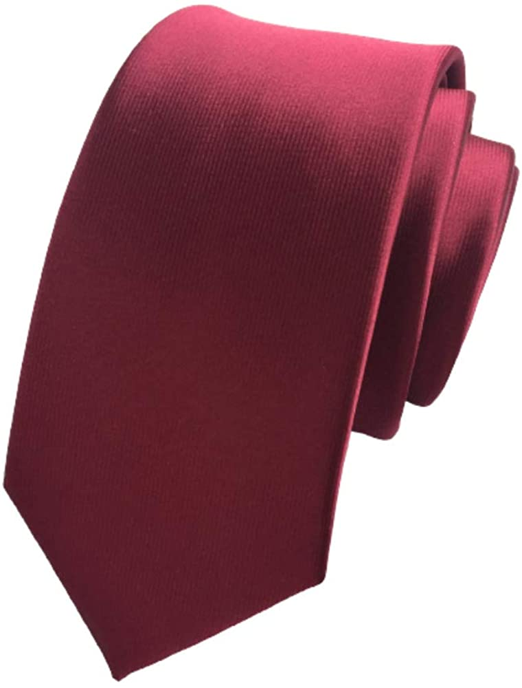 Solid Color Skinny Tie Slim Neckties for Men (2.4'') + Gift Box