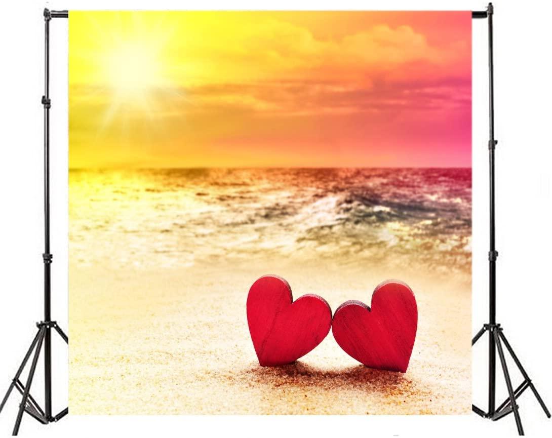 Leyiyi 6x6ft Photography Background Wedding Ceremony Backdrop Happy Valentine's Day Heart Shape Seaside Sunset Sand Beach Marriage SPA Party Bridal Shower Birthday Photo Portrait Vinyl Studio Prop
