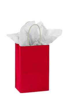 Small Red Glossy Paper Shopping Bag (100 Bags/Case) - STOR-92395