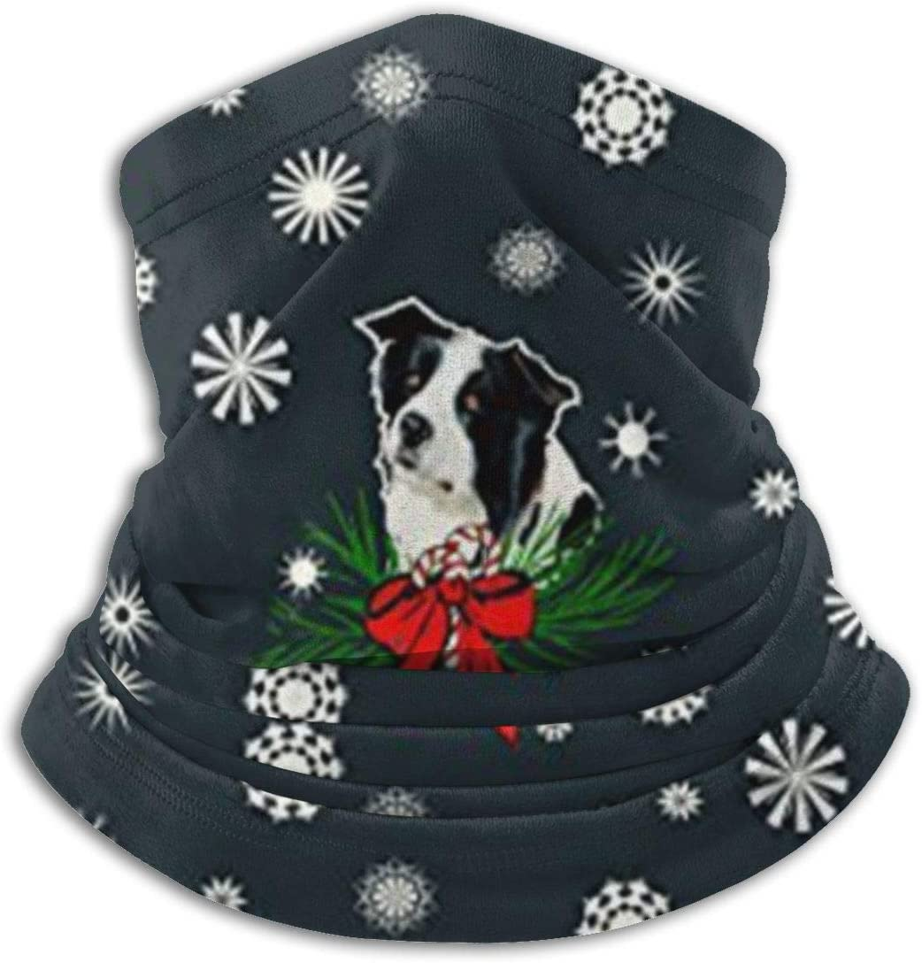 antkondnm Border Collie Christmas Neck Warmer Gaiter, Polar Ski Face Mask Cover for Winter Cold Weather & Keep Warm