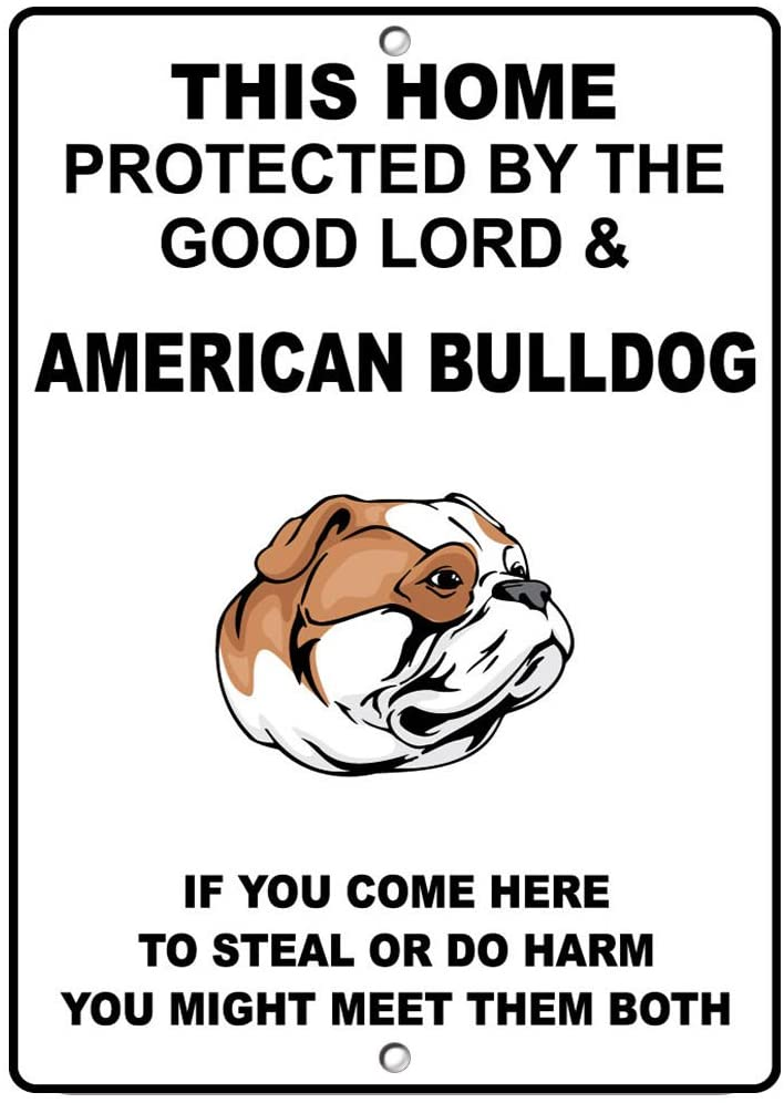 American Bulldog Dog Home Protected by Good Lord and Novelty SignVinyl Sticker Decal 8