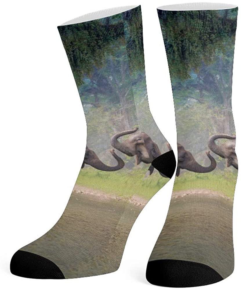 XOZOTY Custom Funny Novelty African Landscape Elephant Crew Socks for Mens Womens