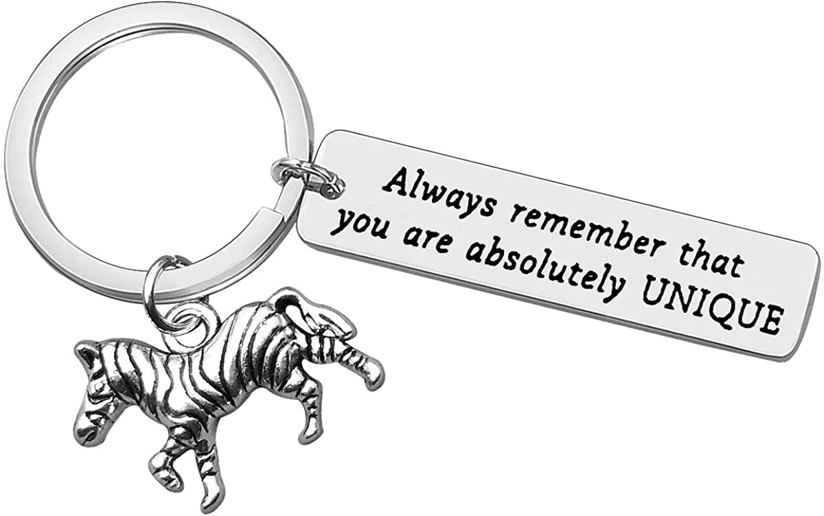 Encouragement Jewelry for Zebra Lover Jewelry Inspirational Keychain Always Remember That You are Keychain Keyring Graduation Birthday Anniversary Christmas Gifts for Women Men Friend