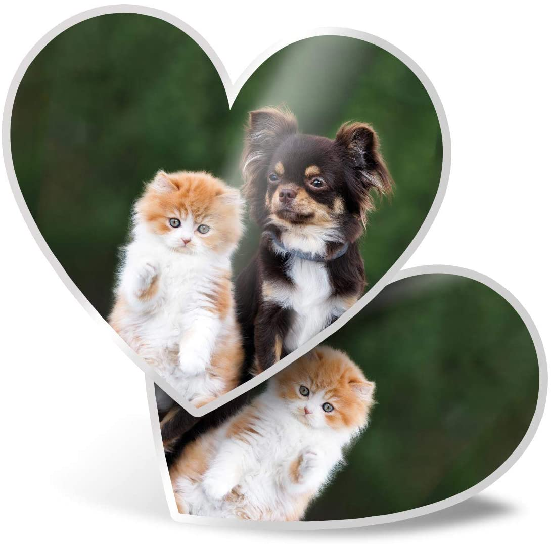Awesome 2 x Heart Stickers 7.5 cm - Best Friends Kitten & Chihuahua Fun Decals for Laptops,Tablets,Luggage,Scrap Booking,Fridges,Cool Gift #15656