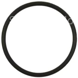 Standard Ignition GDR201 Direct Injection High Pressure Fuel Pump Fuel Pump O-Ring