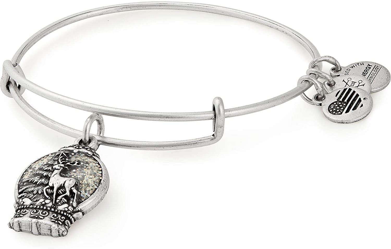 Alex and Ani Black Friday Snow Globe Charm Bangle Bracelet - Rafaelian Silver Finish