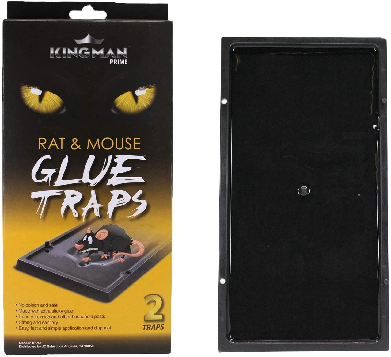 KINGMAN PRIME Medium Mouse Trap Rat Trap Glue Trap/Board (1 Pack / 2 Traps) Rodent Trap Safe Easy Non-Toxic