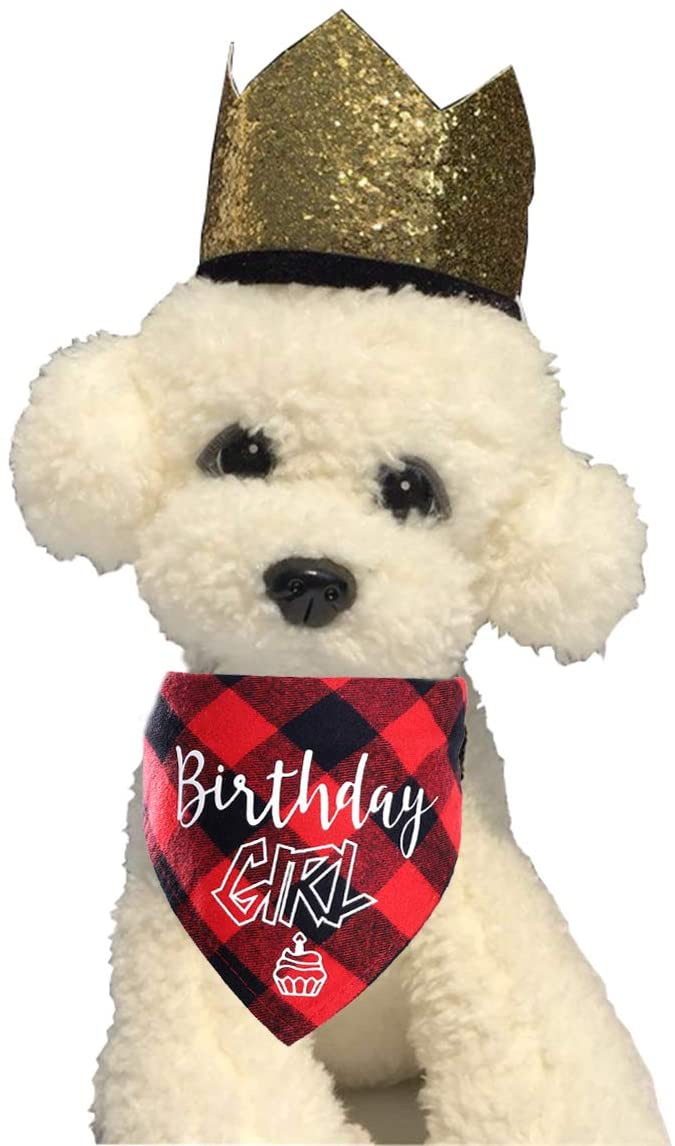 YOAVIP Pet Dog Cat Birthday Crown Hat Bandana Scarf Party Supplier Set of 2