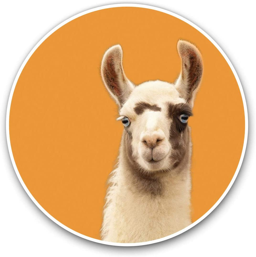 Awesome Vinyl Stickers (Set of 2) 10cm - Cute Llama Alpaca Face Animal Fun Decals for Laptops,Tablets,Luggage,Scrap Booking,Fridges,Cool Gift #16696