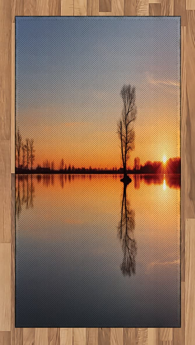 Ambesonne Lake Area Rug, Silhouette of Single Tree Over Still Lake Basin with Last Sun Rays on The Day Theme, Flat Woven Accent Rug for Living Room Bedroom Dining Room, 2.6' x 5', Orange Blue