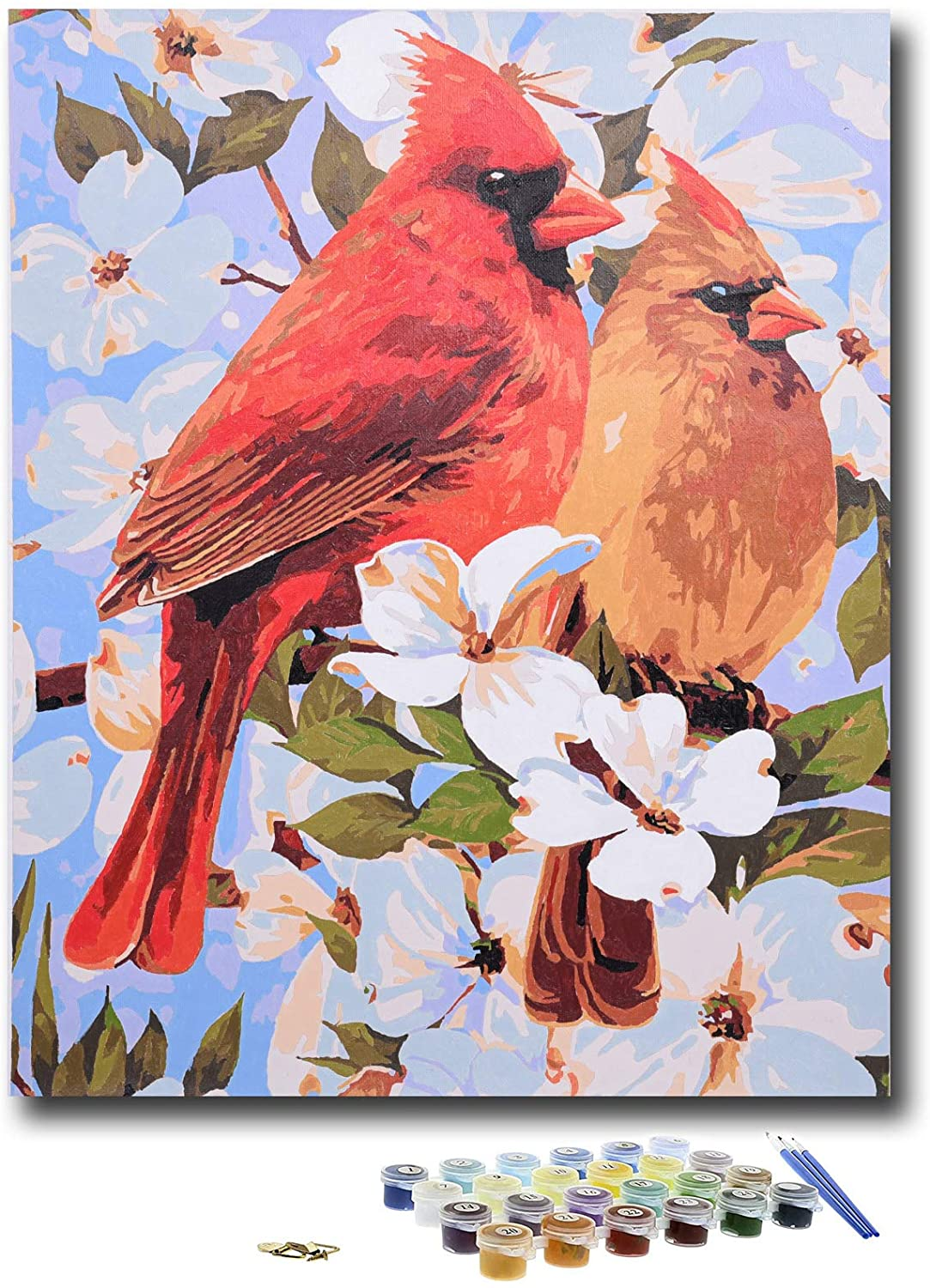 KLIERWOY Paint by Numbers for Adults - DIY Oil Paint Beginner Kit Art Canvas Set 16x20 inch (Without Frame) Red Cardinal Birds Animal