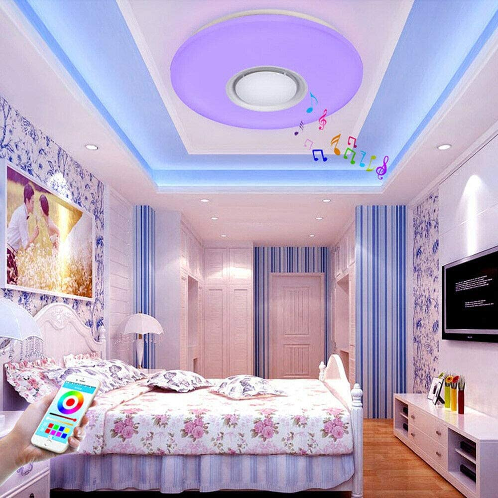 TFCFL 24W Ceiling Light with Bluetooth Speaker, Dimmable LED Flush Mount Acrylic Party Light Color Changing with Remote Control & Smart APP for Bedrooms Kids Room