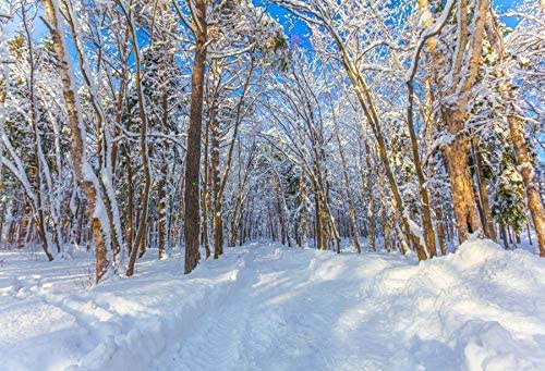 5x3ft Winter Photography Backdrop White Snow Covered Forest Road Background Christmas Party Banner Decoration Portrait Photo Booth Shoot Studio Props Photocall