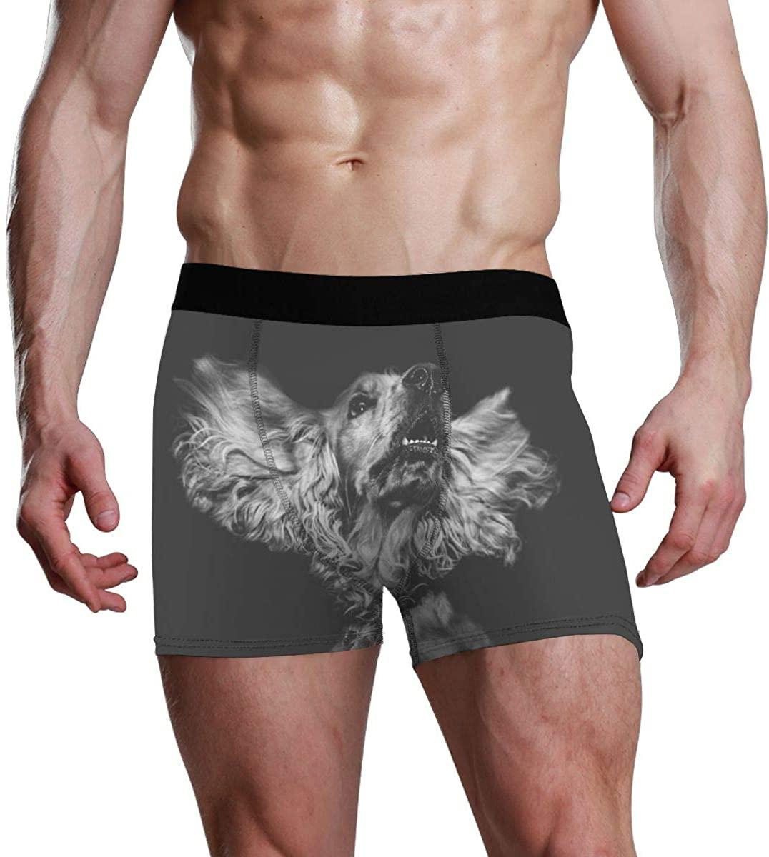 Icybanana Men's Boxer Briefs Dog Pet Animal Pattern Black Soft Cotton Stretch Sports Underwear Japanese