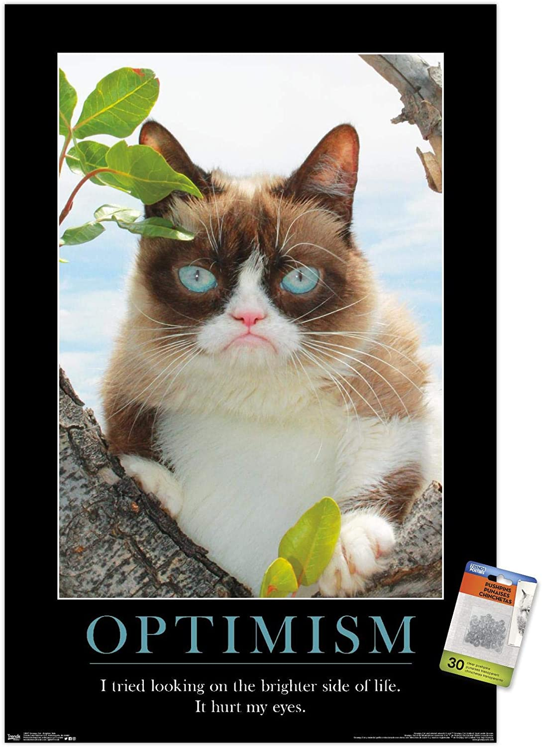 Grumpy Cat - The Brighter Side Wall Poster with Push Pins