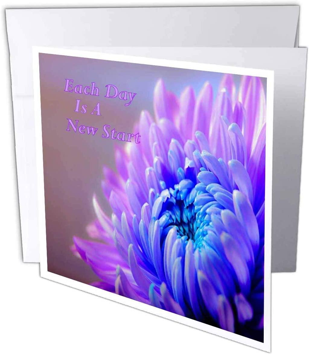 3dRose Image of Beautiful Chrysanthemum Closeup - Greeting Cards (gc_329020_2)