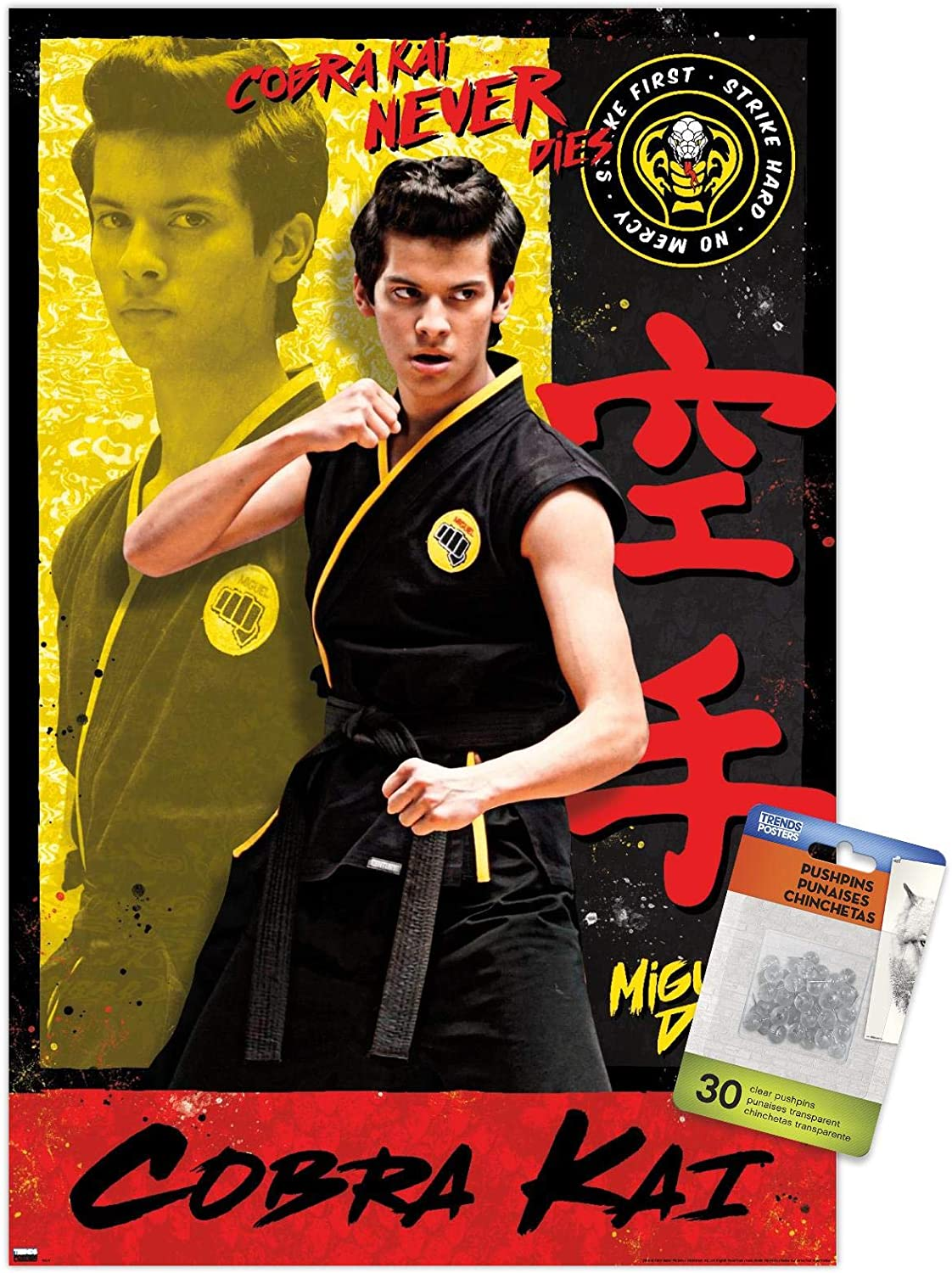 Cobra Kai - Miguel Wall Poster with Push Pins