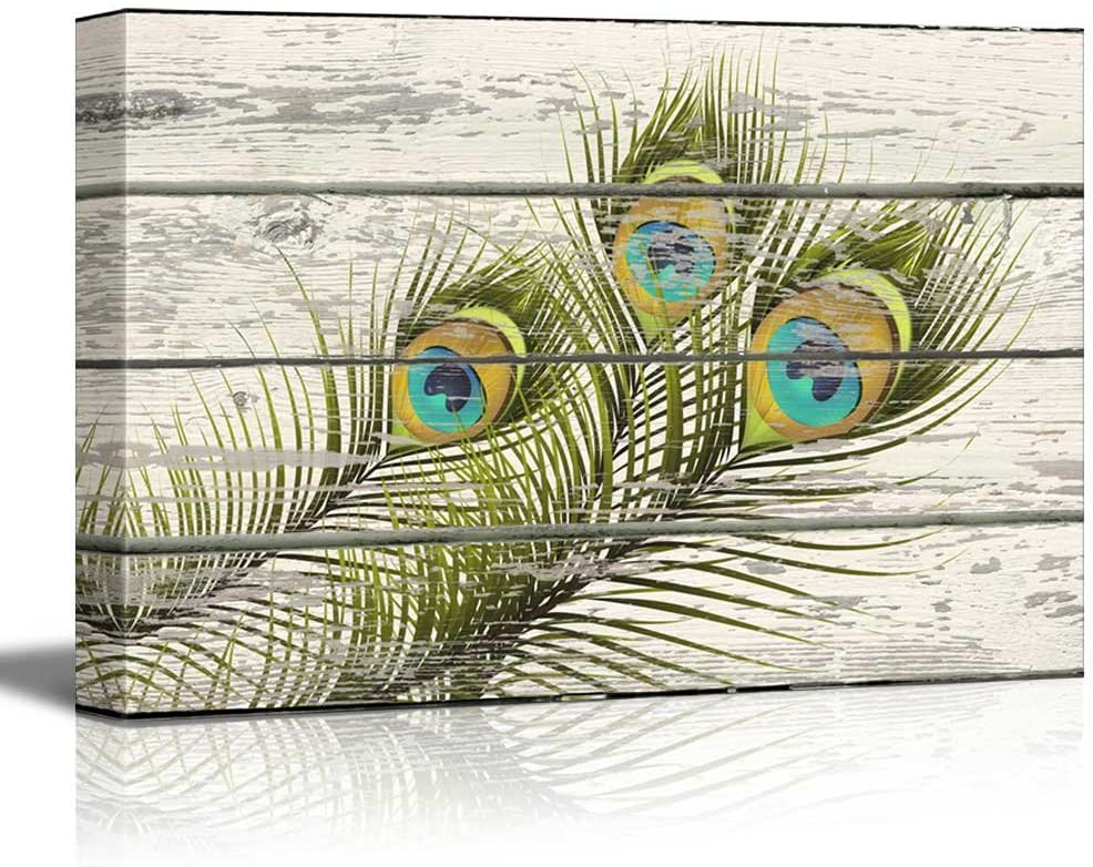 wall26 - Colorful Peacock Feathers Artwork - Rustic Canvas Wall Art Home Art - 16x24 inches
