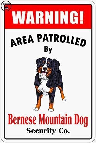 Warning Area Patrolled by Bernese Mountain Dog 8