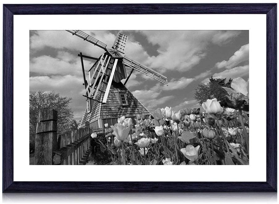 GLITZFAS Art Print Black Wood Framed(Netherlands Flowers Tulips Windmill) Wall Art Picture for Home Decoration 20x14 Inches Black and White