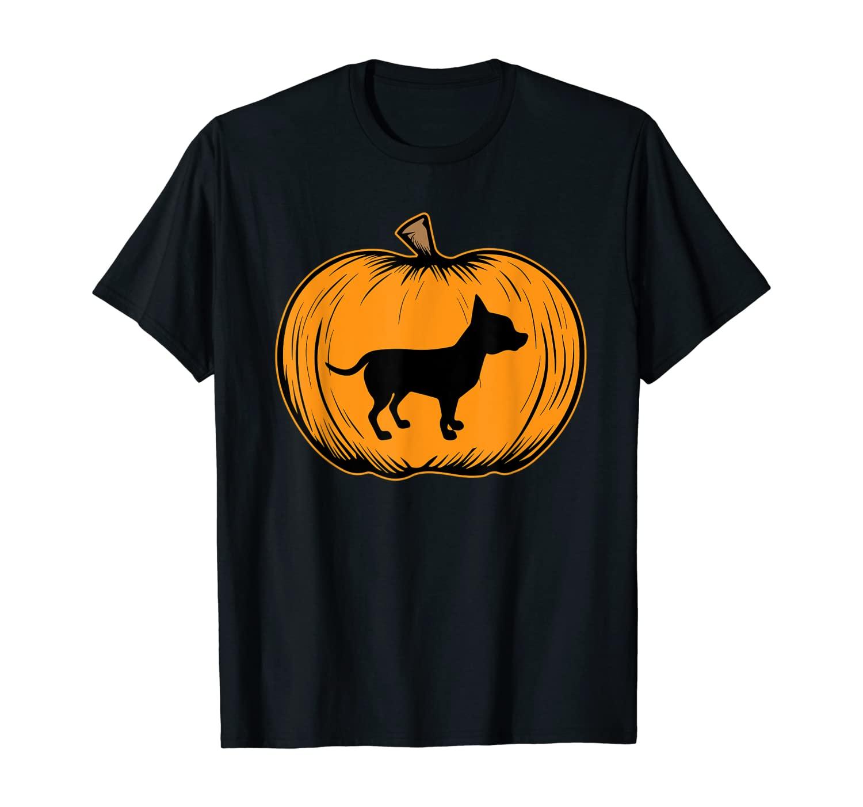 Halloween Pumpkin Mini Pincher Dog-Dog Halloween Costume T-Shirt