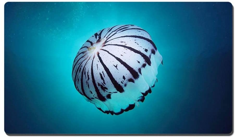 Sea Animals Jellyfish Animal Picture Game Office Large Mouse Pad (13.5x23.5inches)