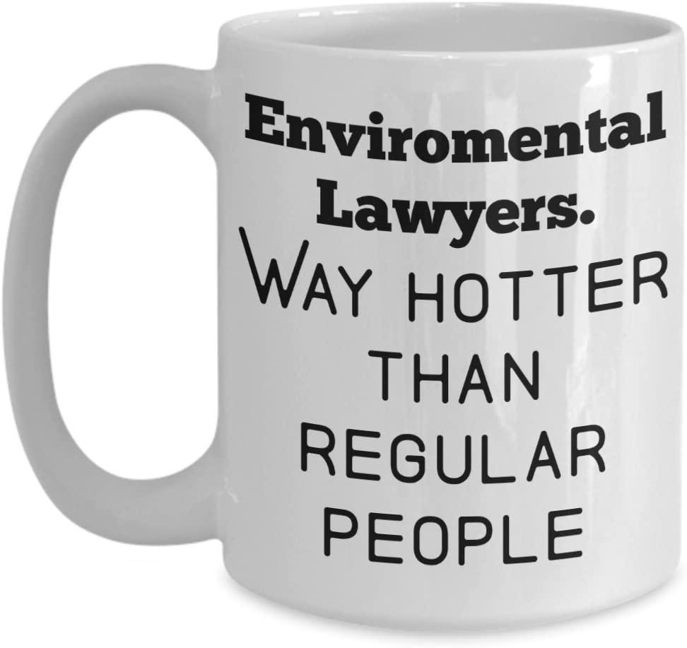 Environmental Lawyer Mug, Funny Gift Coffee Cup