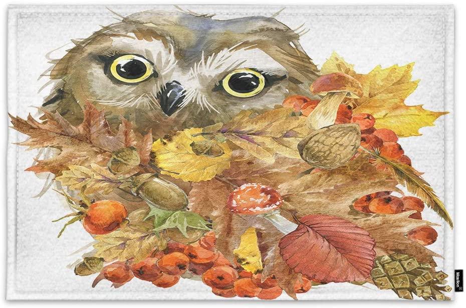 Moslion Owl Door Mat Acorn Nut Leaves Watercolor Funny Animal Hand Drawn Painting Wildlife Non Slip Funny Doormat for Outdoor Indoor Decor Entry Rug Kitchen Bedroom Mat 18 x 30 Inch