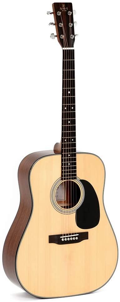 AMI DM-1ST Acoustic Guitar