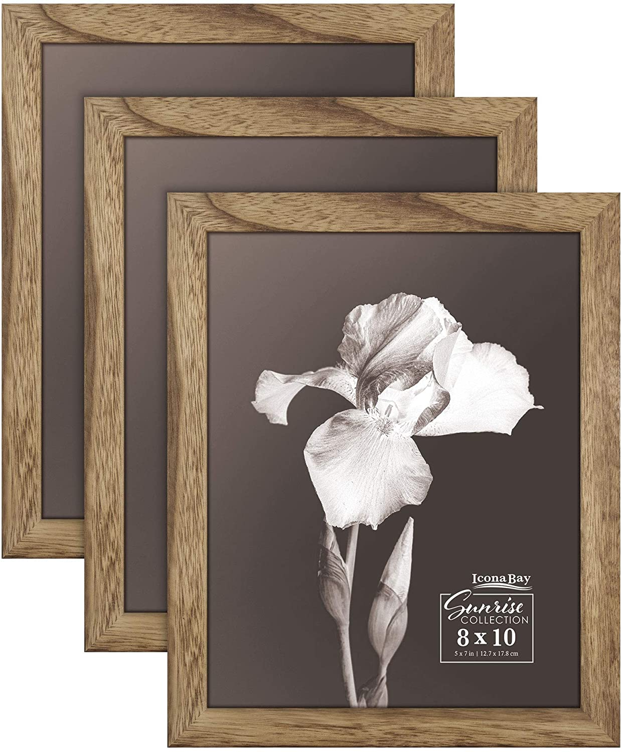 Icona Bay 8x10 Picture Frames (Walnut Brown, 3 Pack) Solid Wood, Modern Farmhouse Set, Sunrise Collection