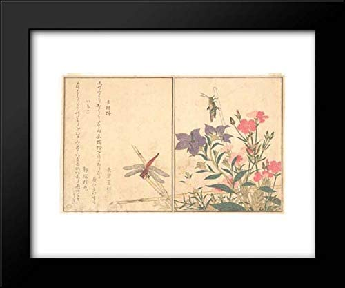 Kitagawa Utamaro - 24x20 Framed Art by Museum Prints Titled: Red Dragonfly (Akatonbo); Locust (Inago), from The Picture Book of Crawling Creatures (Ehon mushi erami)
