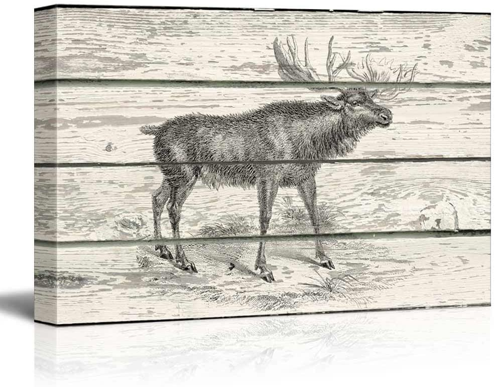 wall26 - Illustration of a Brown Deer on a Rustic Wooden Background - Canvas Art Home Art - 32x48 inches