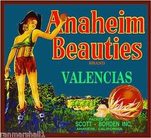 MAGNET Anaheim California Beauties Pirate Girl Orange Citrus Fruit Crate Magnet Print